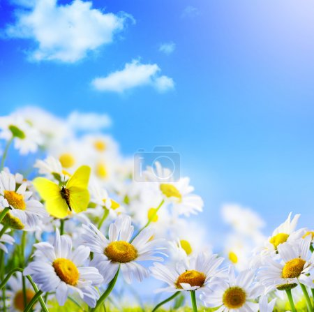 Photo for Spring background with on a background of blue sky - Royalty Free Image