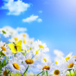 Spring background with on a background of blue sky...