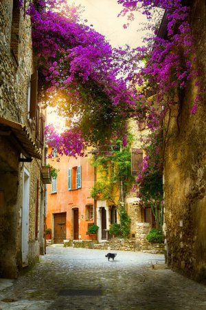 Art beautiful old town of Provence