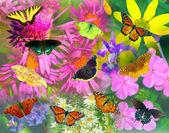"Постер, картина, фотообои ""Бабочка и цветок коллаж"""