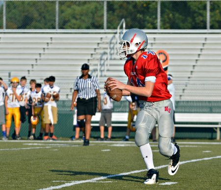 Quarterback Ready to Pass