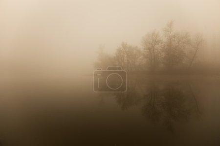 Photo pour Brouillard - image libre de droit