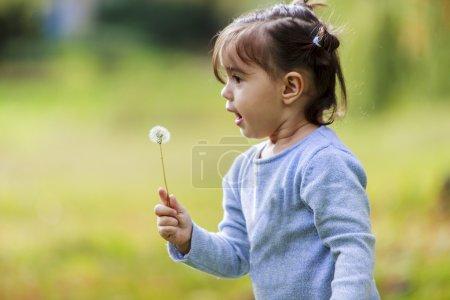 Photo pour Petite fille avec pissenlit - image libre de droit