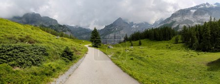 Country road at the Alps