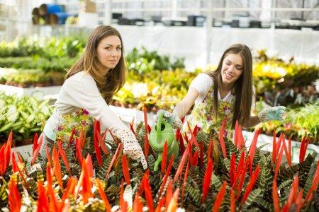 Young women in flower garden