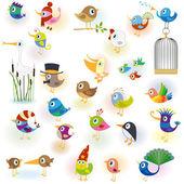 Birds set14