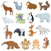 Various Wildlife Animals set on white background