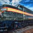 Famous Grand Canyon train with special photographi...