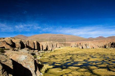 Photo pour Un désert sur l'altiplano des andes en Bolivie - image libre de droit