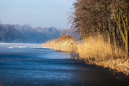 Photo pour Paysage traditionnel polonais dans lac gelé hiver. - image libre de droit
