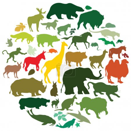 Illustration for Vector set of wild mammals - Royalty Free Image