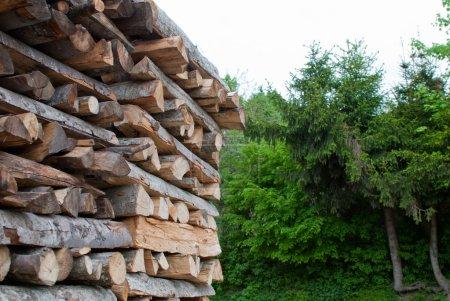 Photo pour La section des billes de bois empilées les unes sur les autres dans un tas - image libre de droit
