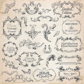Vector Set: Calligraphic Design Elements and Page Decoration Vintage Frame collection with Flowers