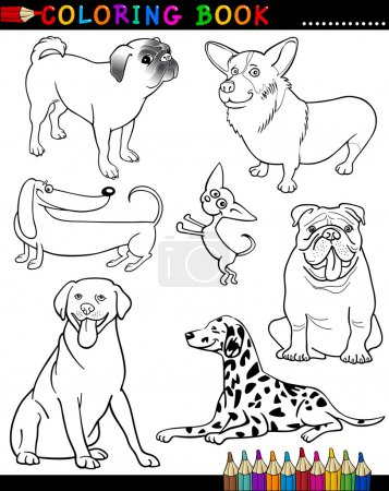 Illustration for Coloring Book or Page Cartoon Illustration of Funny Purebred Dogs for Children - Royalty Free Image