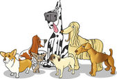 Purebred dogs group cartoon illustration