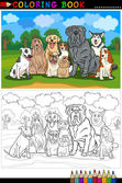 Purebred dogs cartoon for coloring book