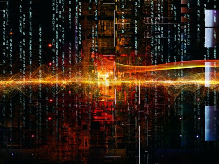 Diversity of Digital Network