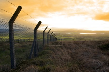 Barbed wire fencing and view