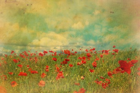 Photo for Red poppies fields with blue sky and grungy effect - Royalty Free Image