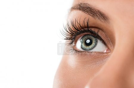 Close up of natural female eye isolated on white b...