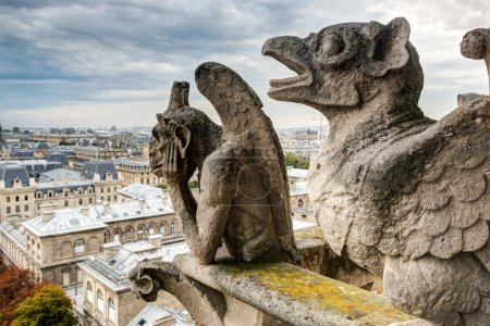 Chimeras of the Cathedral of Notre Dame de Paris overlooking Par