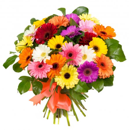 Photo for Bouquet of colorful gerberas isolated on white background - Royalty Free Image