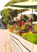 Summer flowers near the town roadside cafe