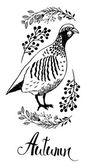 Autumn design card with bird partridge and wild herbs