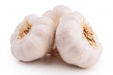 Photo for Isolated garlic - Royalty Free Image