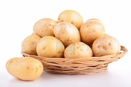 Raw potato isolated