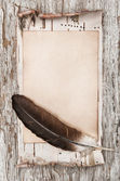 Aged paper, feather and birch bark on the old wood
