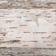 Birch bark on the old wooden background...