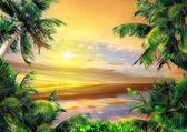 Palms with sunrise
