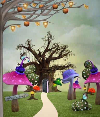 Wonderland garden