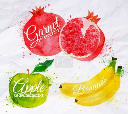 Illustration for Fruit set drawn watercolor blots and stains with a spray banana, pomegranate, apple green - Royalty Free Image
