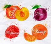 Fruit watercolor peach raspberry plum orange