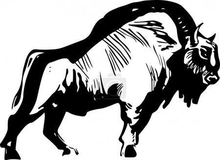 Illustration pour Bison debout sur fond blanc - image libre de droit