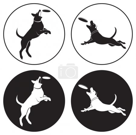 The figure shows the dog-frisbee