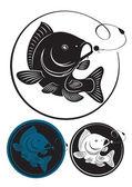 the figure shows the carp fish