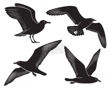 Illustration for The figure shows a bird seagull - Royalty Free Image