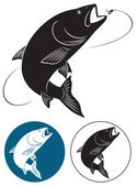 The figure shows a fish chub vector illustration