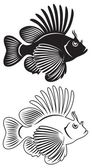 že ukazuje ryba Perutýn