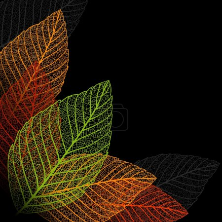 Illustration for Skeleton leaf background. - Royalty Free Image