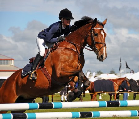 Equestrian Competition at the 2012 Canterbury AMP Show.