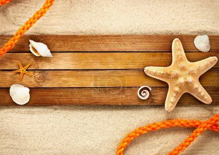 Photo pour Quelques éléments marins sur une planches de bois sur fond sableux. - image libre de droit