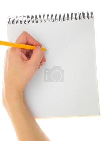 Photo pour Geste avec crayon et tampon isolé de dessin de la main - image libre de droit