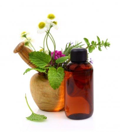 Photo pour Mortier et pilon aux herbes fraîches et bouteille d'huile essentielle - image libre de droit