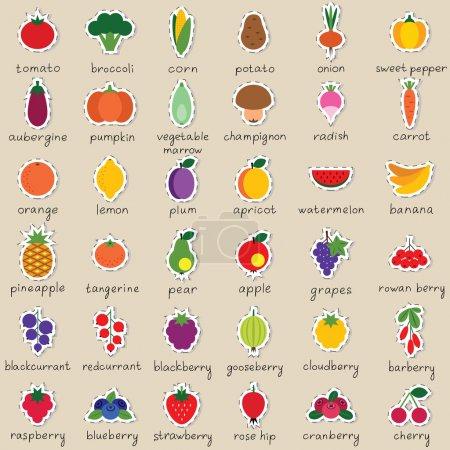 Illustration pour Ensemble d'autocollants vectoriels pour fruits et légumes colorés - image libre de droit