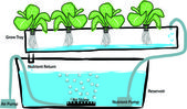 Ruční nakreslit schéma nastavení hydroponie