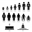 A set of pictograms representing human aging proce...